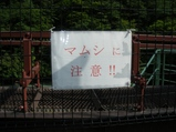 コピー 〜 IMGP0061