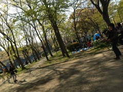 写真 2013-04-13 15 27 50