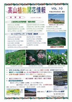 高山植物開花情報VOL.10