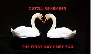 I still remember 1