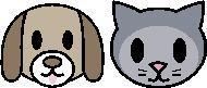 cat6dog