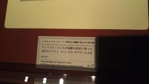 DSC_0381_R