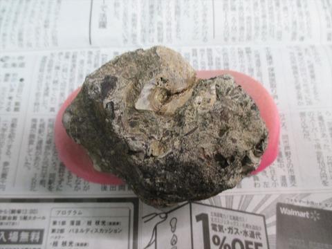 ボロボロ母岩クリ前