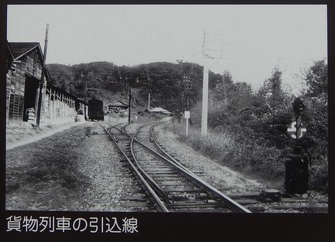 DSCN7584 (3)