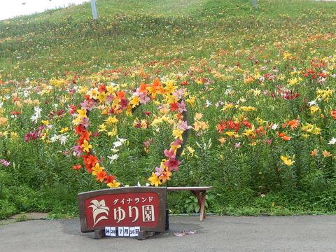 DSCN7462