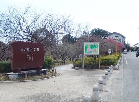 DSCN7769
