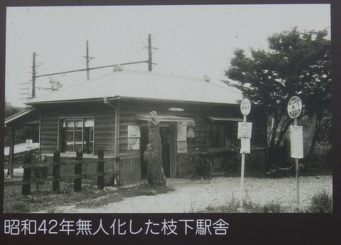 DSCN7584 (2)