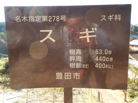 DSCN9232