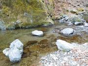 水ぬるむ溪