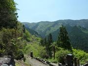 太田部からの山