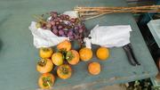 秋の味覚と寒竹