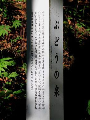 20111121budounoizumi-001
