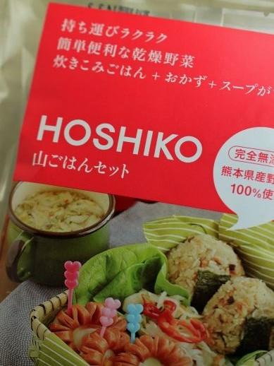 20130403hoshiko-777