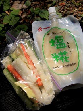 20120518shiokojiduke-002