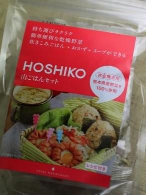 20130403hoshiko-001