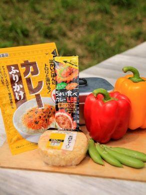 20120711natuyasaicurry-001