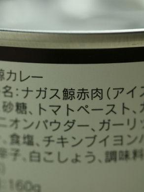 20140620kujiracurry-002