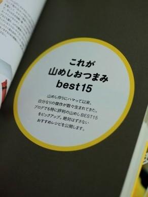 20121025yamameshibook-001