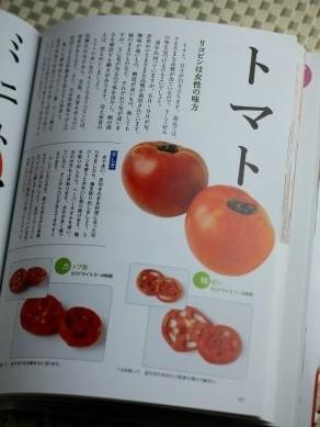 20130412hoshiyasai-003