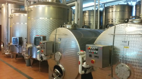 Tour of GranMonte Vineyard (4)