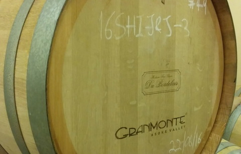 Tour of GranMonte Vineyard (6)