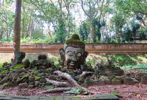 Thailand_Chiang Mai_Wat Umong_Buddhist temple_D2-1