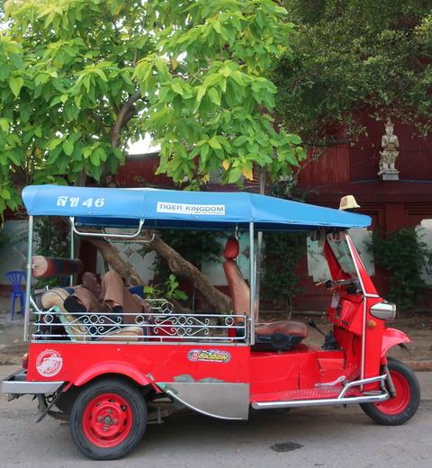 Tuk-tuk taxi driver taking a nap