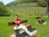 ホウちゃんとワイン畑