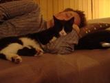 ホウちゃんの腕枕で寝るサマ