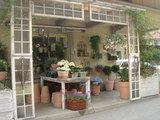 花屋の店先2