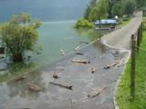 洪水Oberried2