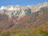 紅葉のスイス山
