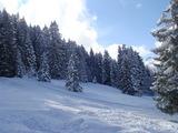 誰もいないスキー場2