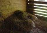 納屋の中の干草のベット