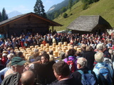 チーズ祭り1