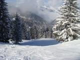 誰もいないスキー場