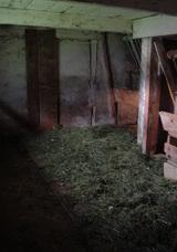 納屋の中で干草にする