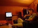 テレビを見るホウちゃん