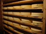 チーズ小屋