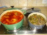 チキンのトマトソースと牛肉のワイン煮