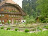 素敵な庭のある家