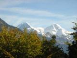 山は真っ白