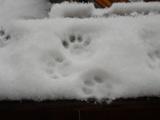 殿様の足跡