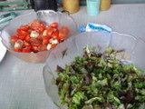 サラダとトマトサラダ