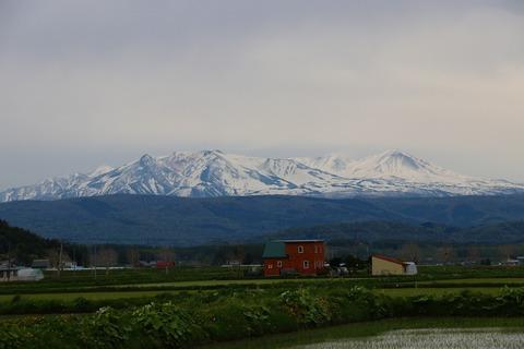 今日の大雪山と十勝連峰(雪が降りました)