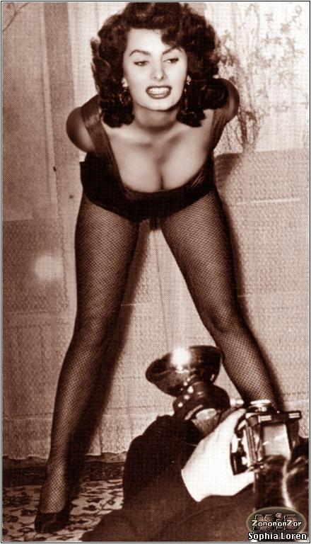 Sophia-Loren-sophia-loren-15541144-440-768