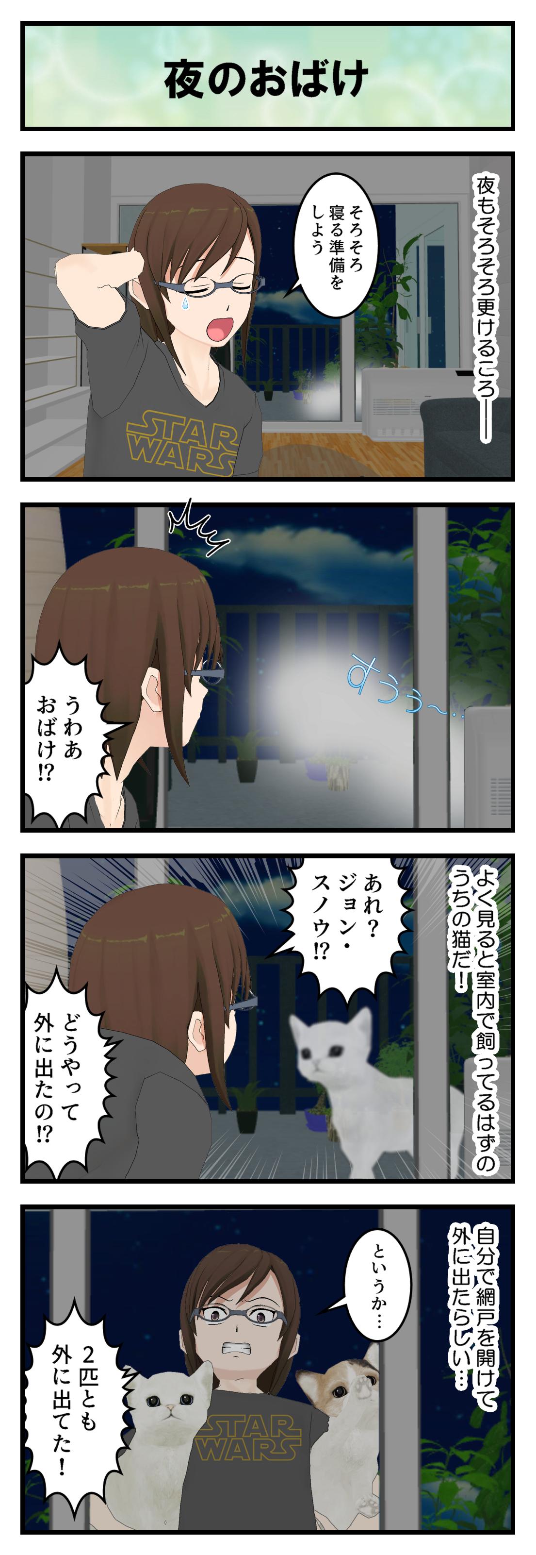 R661_猫の脱走_001