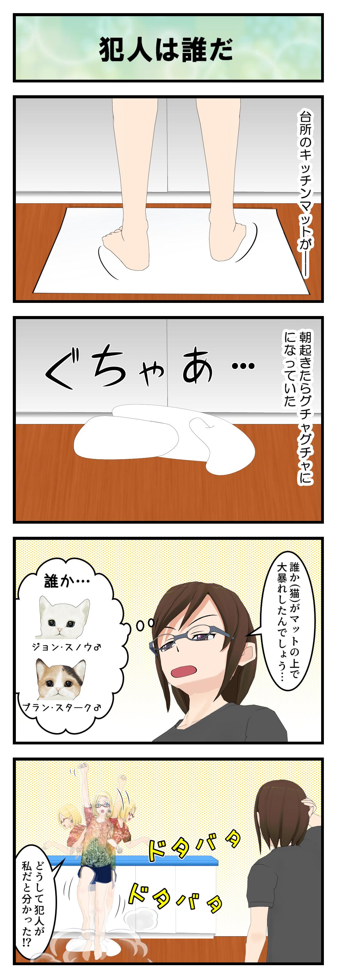 R255_キッチンマット_001