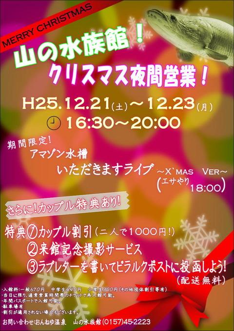 2013クリスマスナイト宣伝用