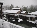 雪の温泉。